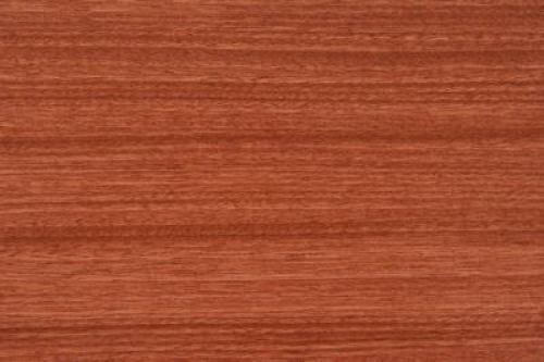公约限木材出口 红木原材变宝