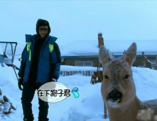 希望广大网友认清中国当前生态形式,手下留情,珍爱这些可爱的动物