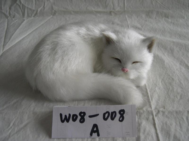 睡猫图片大全可爱图片