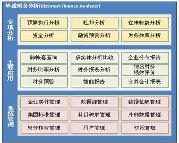 毕盛财务分析