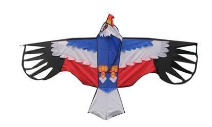 美国鹰风筝