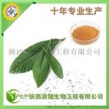 廠家供應植物源殺菌劑,枇杷葉提取物,烏索酸,熊果酸