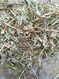 山東花生秧草粉價格  大量供應花生秧羊草  草段