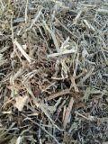 山東花生秧草粉價格  優質花生秧羊草