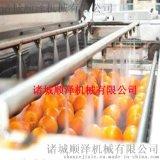 順澤機械專業供應番茄清洗機  藍莓清洗機 高效氣泡清洗機
