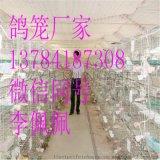 在哪買鴿子籠 鴿籠廠家全國配送三層鴿籠 鴿籠配件