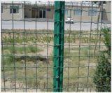 廠家批髮圈地荷蘭網 養殖種植防護網 浸塑荷蘭網