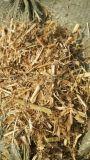 豆秸草粉的營養 牛羊喂豆秸草粉的好處