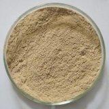 綠豆皮提取物 10%
