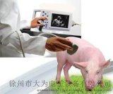 廠家直供優質獸用B超機 性價比高的動物寵物B超機