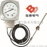 常州寶德拍中小型配電變壓器附件溫度指示控制器BDWTZK-02/03