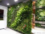 拉薩模擬植物牆 西寧牆面綠化銀川植物牆生產西安模擬綠植牆 貴陽模擬綠籬牆生產