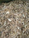豆秸草粉市場行情 餵羊喂牛黃豆秸稈草料