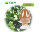GMP廠家供應綠茶提取物,茶多酚98% 84650-60-2