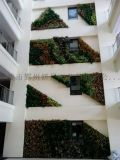 成都模擬植物牆 植物圍牆 綠籬牆生產 假植物牆生產 立體綠化