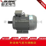 WOLONG/ 臥龍電氣YE2系列高效率三相非同步電動機 工業泵
