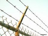 邊境刺繩  監獄刺繩  邊防刺繩