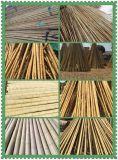 FD-161028大量供應園藝建築產品洗白竹竿