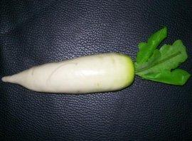 模擬白蘿蔔