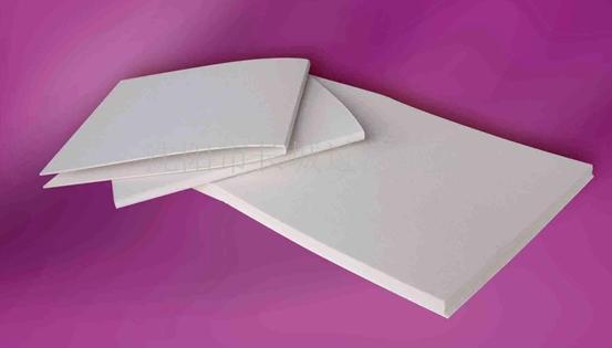 纸板生物小制作