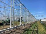 花卉溫室大棚-廣源溫室-智慧溫室