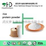 供應食品級大米蛋白粉 80%~ 90%