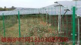 內蒙古電廠圍欄網,分佈式光伏電廠護欄網