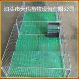 湖南新型保育牀雙體2.2*3.6整體複合板高培產仔欄養豬必備