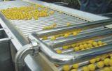果蔬脆片設備