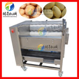 供應自動噴淋芋頭脫皮機 馬蹄毛輥清洗機 土豆清洗去皮機