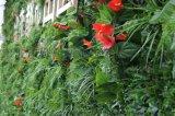 模擬植物牆、綠植牆、景觀綠化