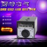 西崎TEA-2001指針溫控儀繼電器輸出