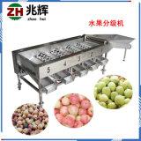 自銷螺桿滾桶蔬果分選機器 不鏽鋼各種水果大小篩選機