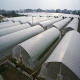 農業溫室大棚 大棚鍍鋅鋼管 溫室大棚骨架 蔬菜溫室大棚