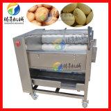 供應 土豆去皮機 電動商用脫皮機 土豆清洗機