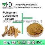 供應純天然提取的白藜蘆醇(虎杖提取物)50%