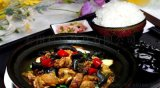 科清食品瓦香雞醬  黃燜雞醬1kg裝