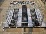 重慶母豬產牀雙體鑄鐵腿分娩欄河北天偉畜牧生產廠家直銷
