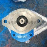 山東北方供應環衛車齒輪泵CBY3063-172L