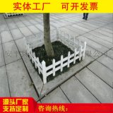 防護柵欄@綠化帶防護欄@安平聚光製造