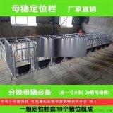 郴州養豬設備廠家供應母豬定位欄