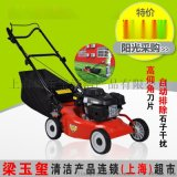 燃油手推式割草機, 綠化手推式草坪機, 汽油手推式草坪割草機