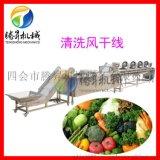 廠家定製款 果蔬清洗風乾生產線  水果清洗機  蘋果清洗風乾生產線