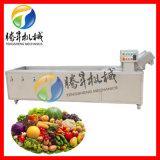 氣泡清洗機 蔬菜瓜果氣泡清洗機 香菜清洗機加工設備 工藝精湛