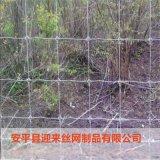 鍍鋅牛欄網,養殖鐵絲牛欄網,養殖圍欄網