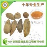 天然植物源殺菌劑,廠家直銷五倍子提取物,鞣花酸40%-90%