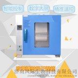電熱恆溫鼓風乾燥箱-醫用恆溫乾燥箱