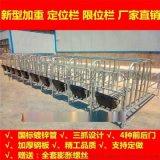 河北新型母豬定位欄怎麼安裝保胎欄多少錢