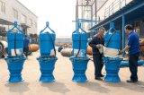 大功率軸流泵/天津潛水軸流泵生產廠家