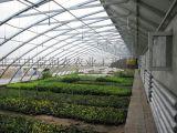 第五代新型熱鍍鋅幾字形鋼骨架日光溫室,蔬菜暖棚,高抗風雪,保溫性能好。